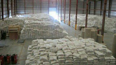 پیشبینی افزایش قیمت برنج