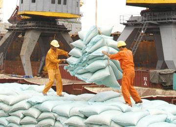واردات برنج به سیستان بلوچستان در سال 98