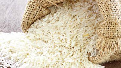 برنج علی کاظمی