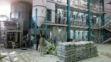 کارخانه شالیکوبی آمل