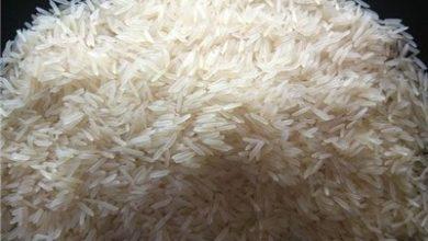 کاهش ارزش روپیه پاکستان دلیل افزایش صادرات برنج