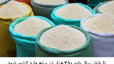 واردات 450 هزار تن برنج تا پایان سال